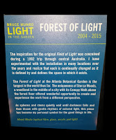 More information on the Forest of Lights.