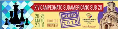 XIV Campeonato Sudamericano Sub-20 (Dar clic a la imagen)
