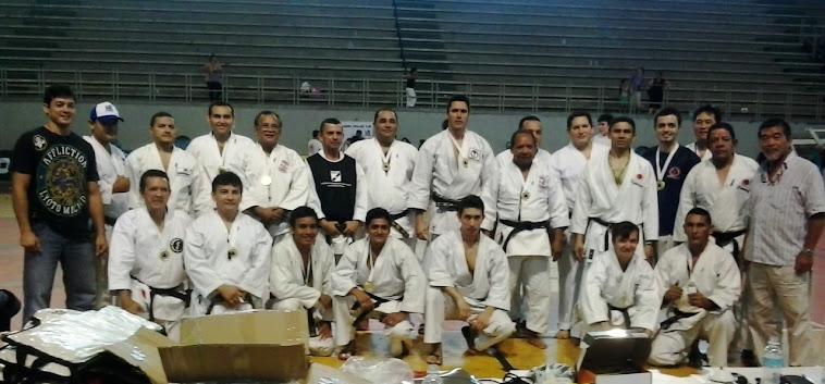 Campeonato Paraense 2012