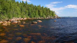 Bosque y el paisaje del lago