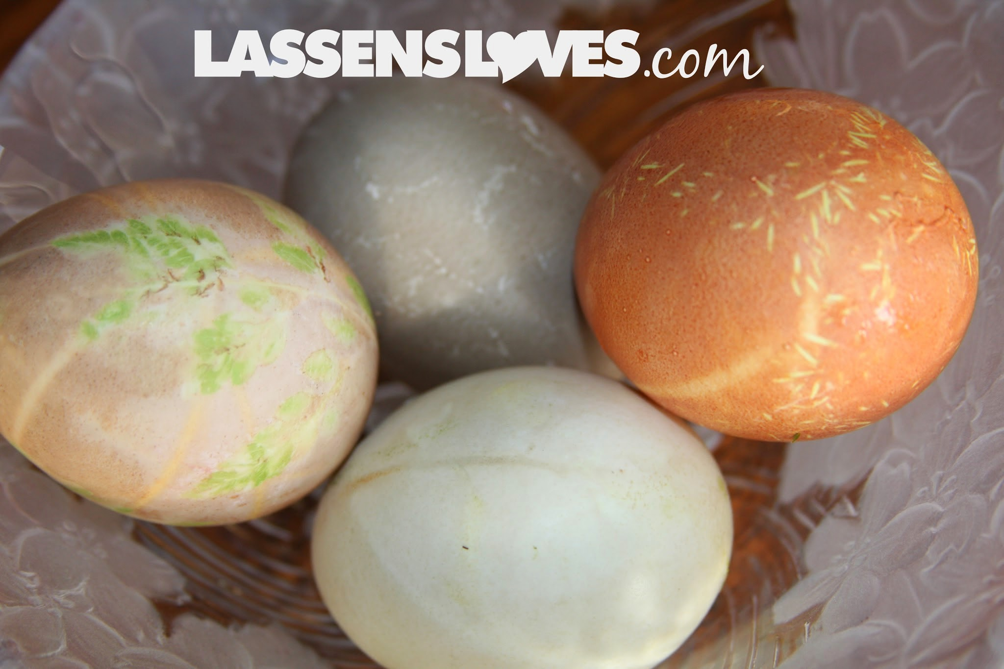 natural+dyeing, easter+eggs, naturally+dye+eggs