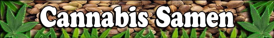 Cannabis Samen Bestellen - Cannabis Anbau