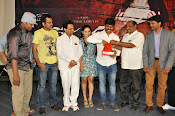 Meera Movie Audio release function photos-thumbnail-14