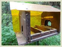 Plexigals-Holz Vogelfutterhaus