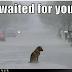 Eγώ όμως σε περιμένω...