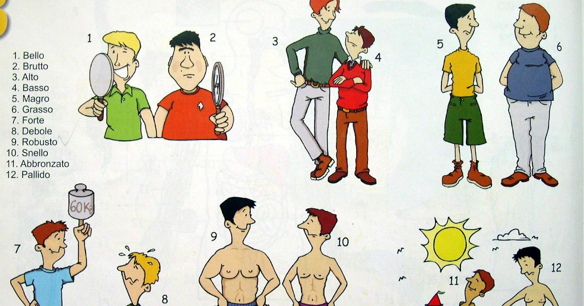 Итальянский в картинках: Описание внешности