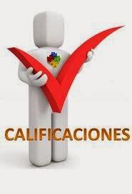 CALIFICACIONES DEL GRUPO 1311