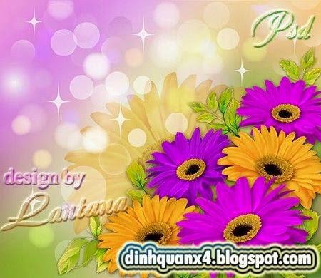 PSD source - Bouquet of gerbera