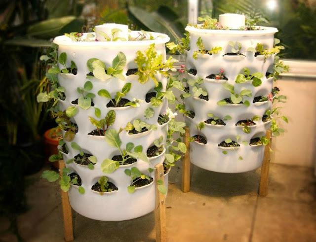 Garden Tower: 50 plantas em pouco mais de 1 m2