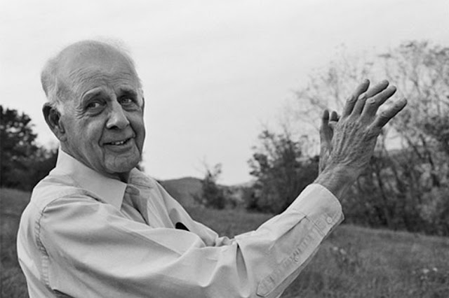 Wendell Berry. Photo Guy Mendes