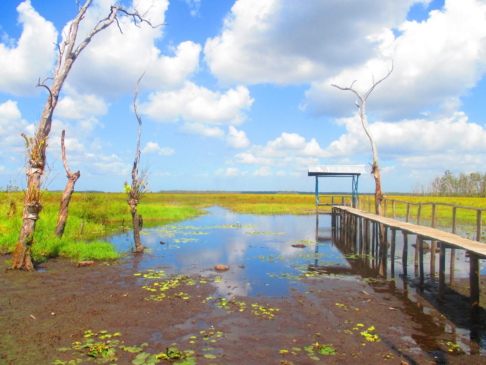 Destinasi wisata di Merauke - Kampung Rawa Biru