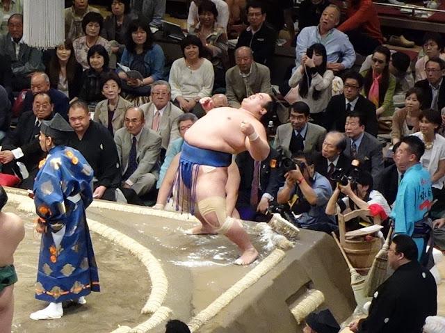 Sumo wrestler bends