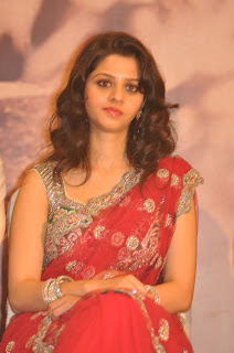 Vedhika Picture Gallery in Red Saree at Paradesi Movie Press Meet
