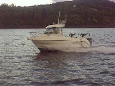 Tidligere Trollingbåter