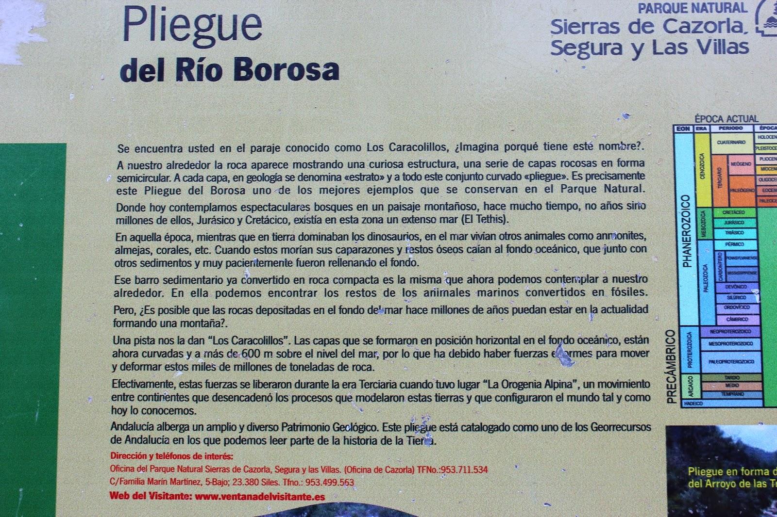 Cartel pliegue río Borosa