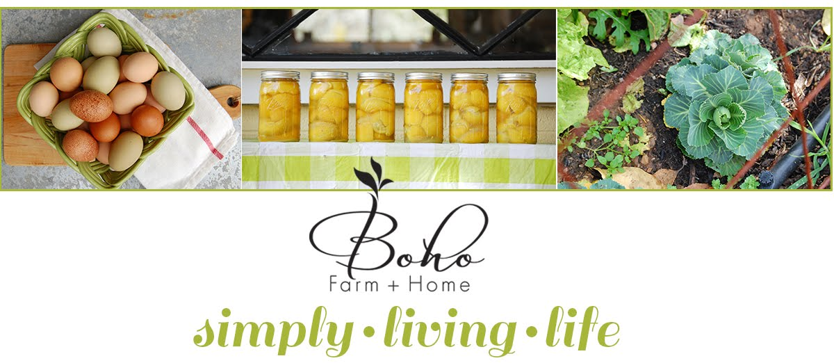 Boho Farm and Home