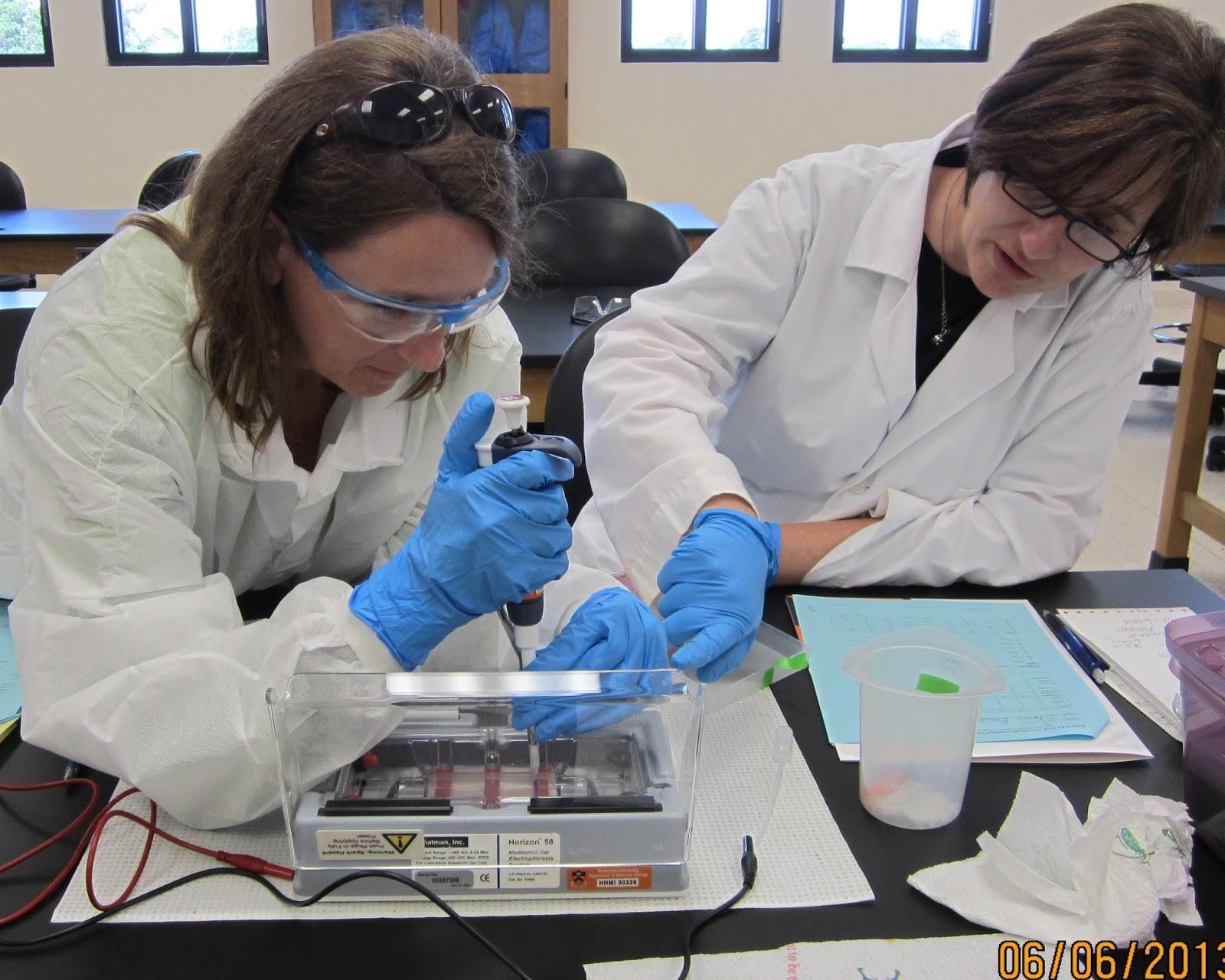 Long Beach Biomedical Research