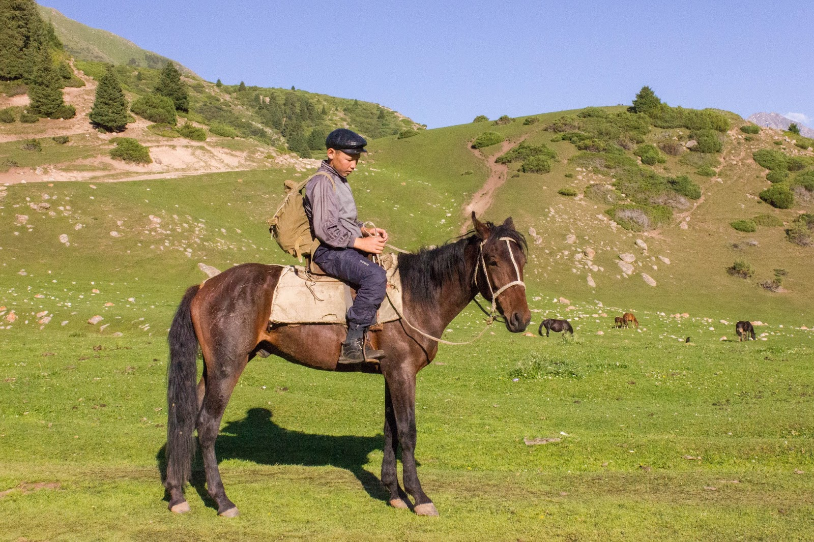 Кыргызстан, Джеты-Огуз, Иссык-Куль, лошадь