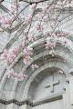 Spring Sanctity