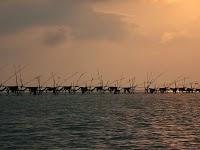 Fishing traps Pulau Selirong