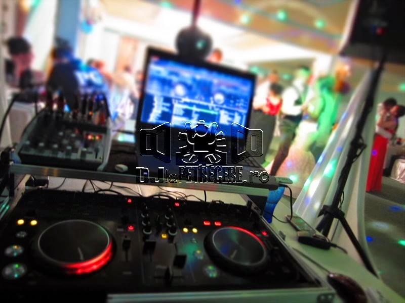 Nunta la Casa Pedro alaturi de DJ Cristian Niculici - 13
