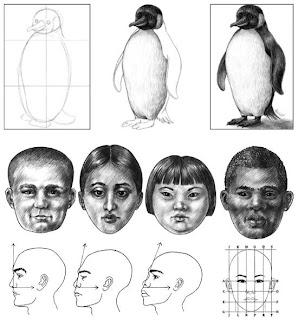 Curso de desenho online gratis passo a passo