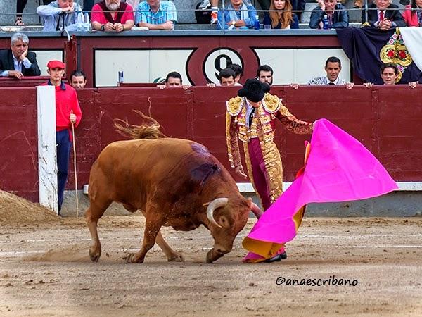 gonzalez sanchez dalp: