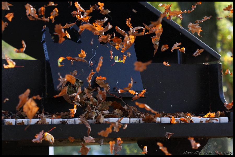 рояль и осень фото