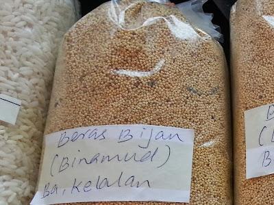 WireBliss - Bakelalan Woman Rice at BIBCO 2013