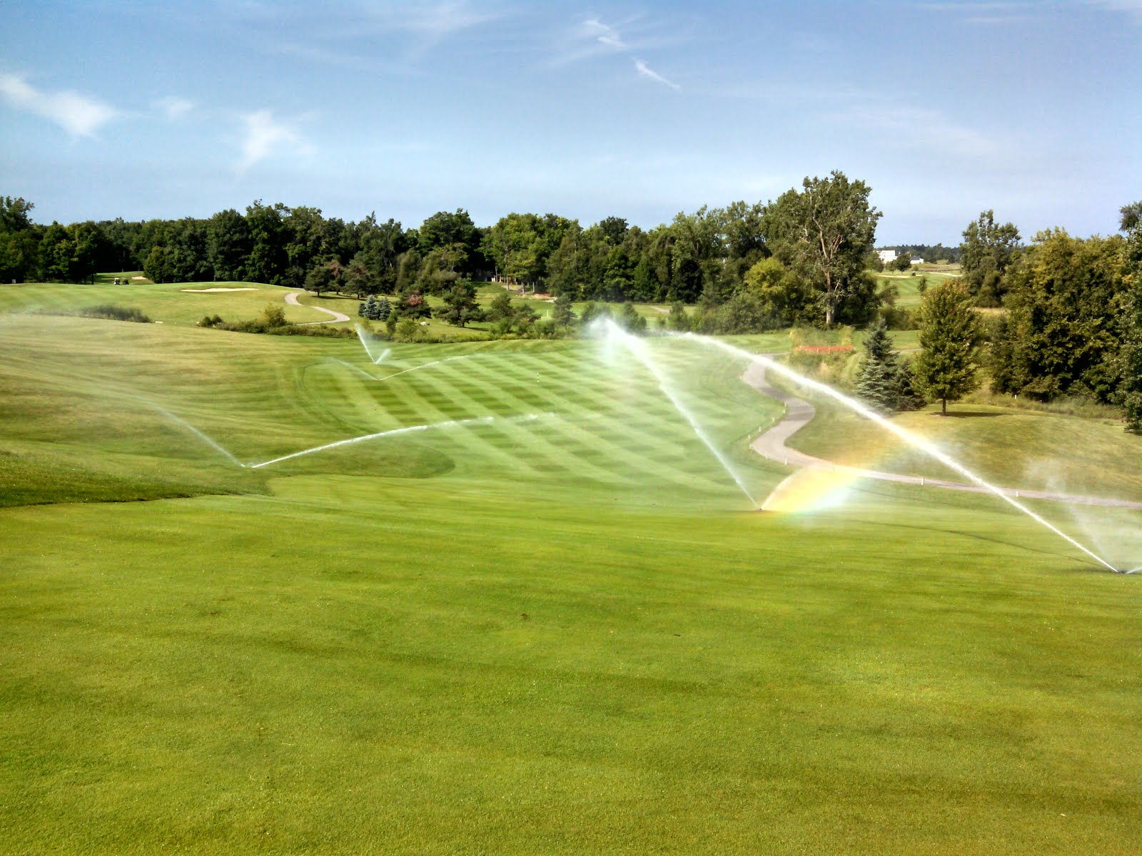 Watering in a wetting agent