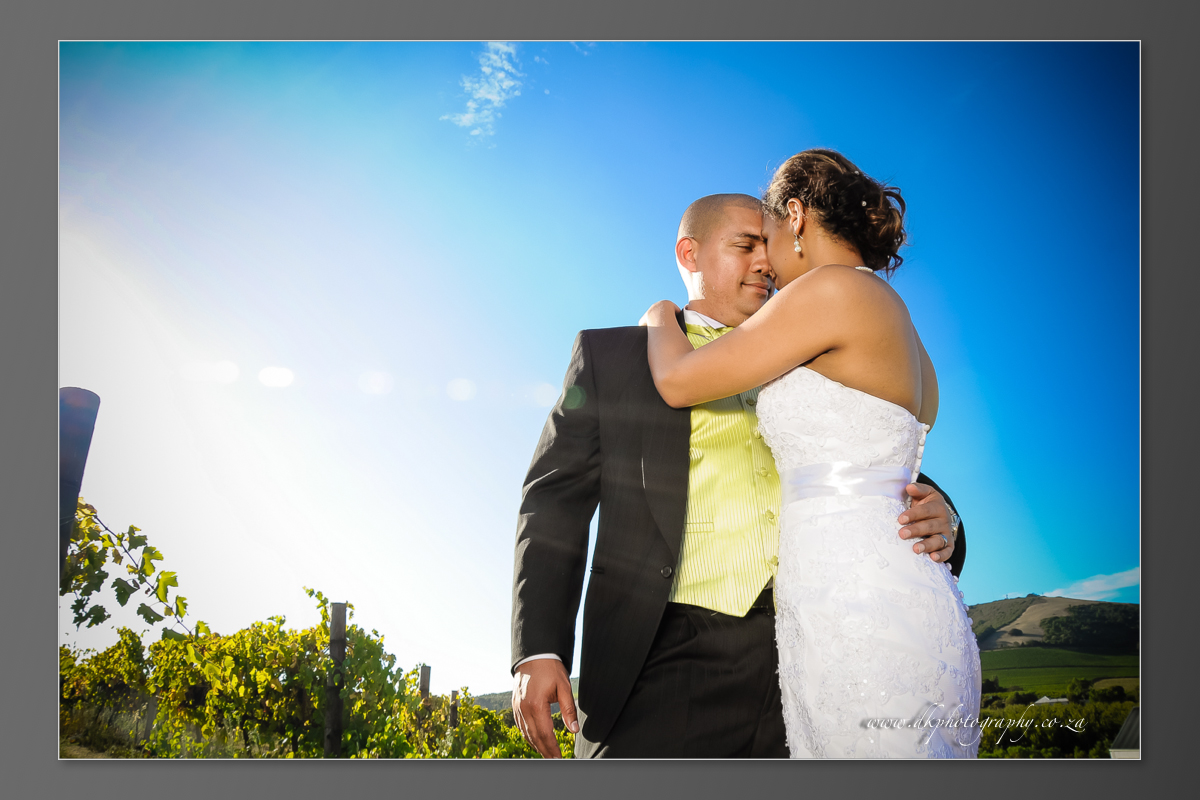 DK Photography DVD+slideshow-314 Cleo & Heinrich's Wedding in D'Aria, Durbanville  Cape Town Wedding photographer