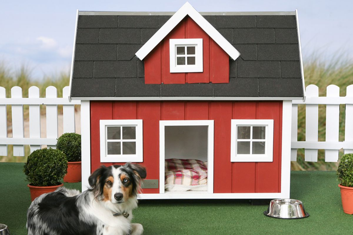 All the best home dog house designs 2011 for Cool dog kennel designs