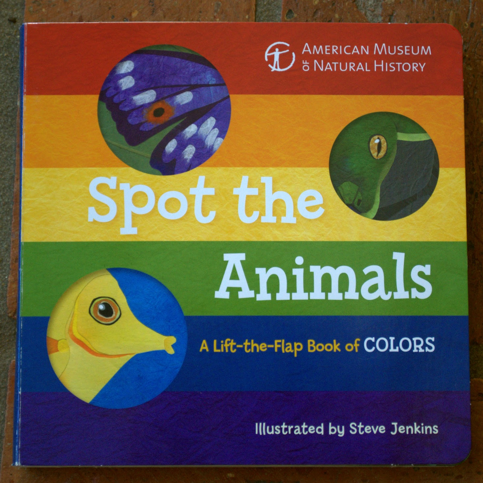 Bookfoolery : Two board books I love: Spot the Animals and 1-2-3 ...