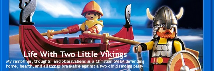 Life With Two Little Vikings