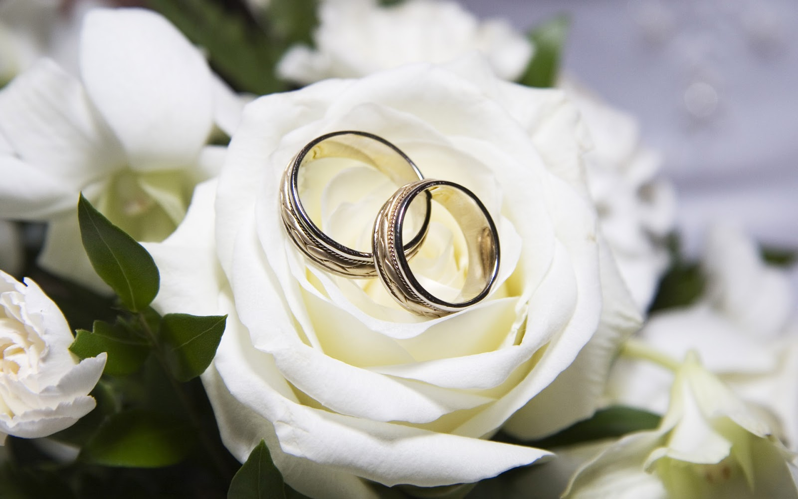 Wedding Toast Is One Of The Inspirational Features In A Yeah It Must To Have Which Used Express Love You For