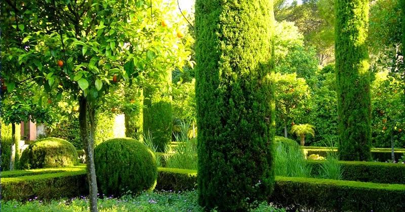 Invernablog el jard n de l 39 albarda for El jardin de l abadessa