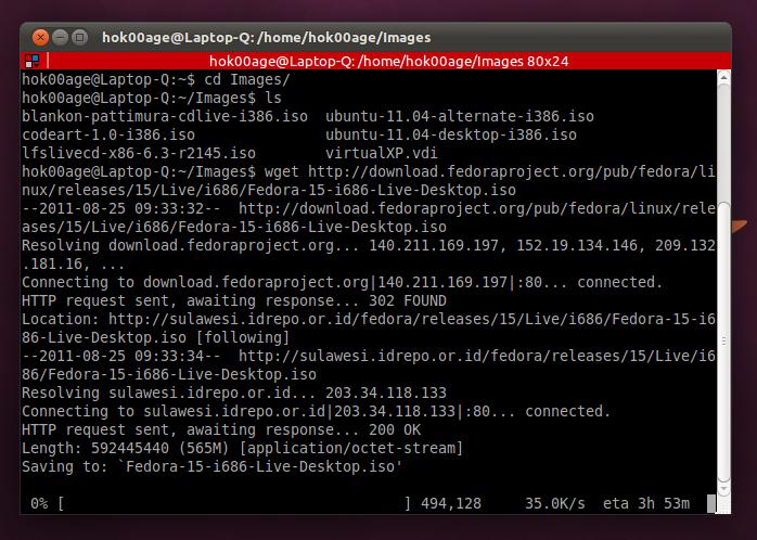 Wget: Aplikasi downloader berbasis Terminal