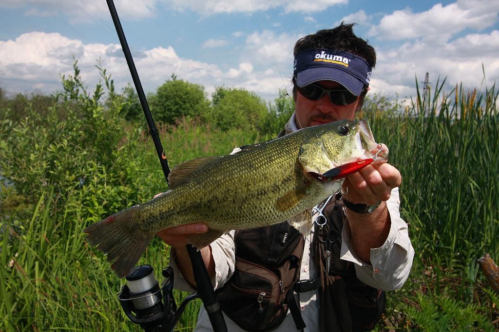 Fishing in croatia and in the neighbourhood bass for Fishing in croatia