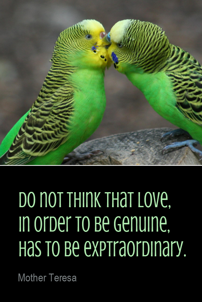 visual quote - image quotation for LOVE - Do not think that love, in order to be genuine, has to be extraordinary. - Mother Teresa