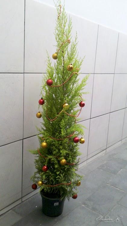 Pinheiro decorado