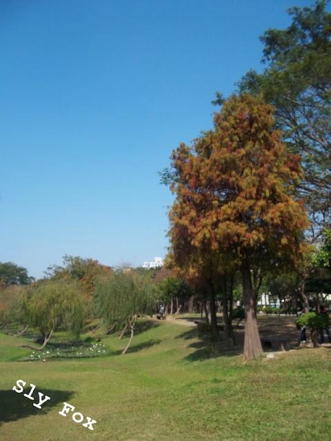 巴克禮公園田代安定