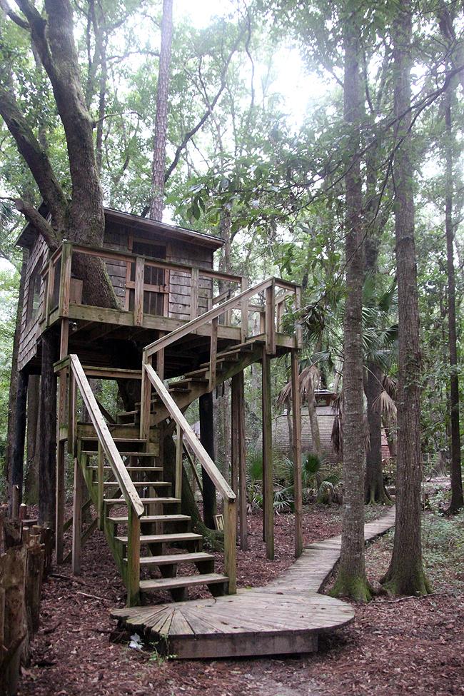 Good Treehouse Hostel Georgia Part - 8: Thursday, September 25, 2014