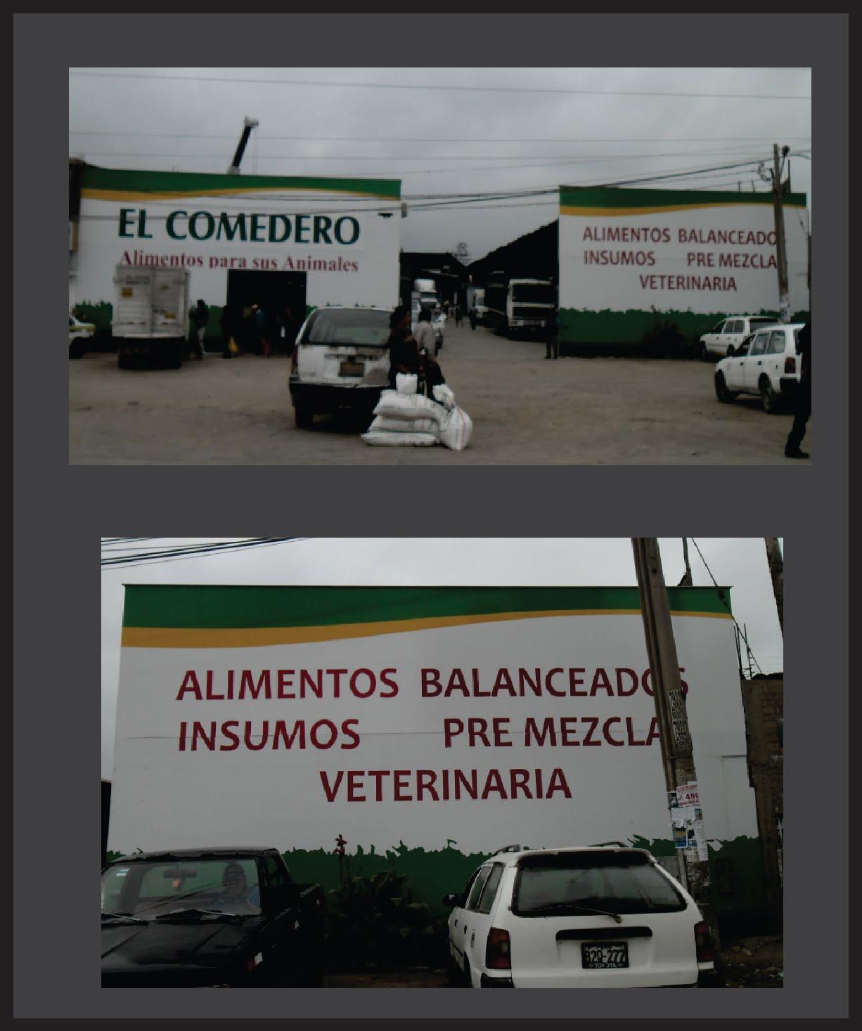 PINTADO DE LOCAL