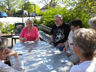 åsna kortspel