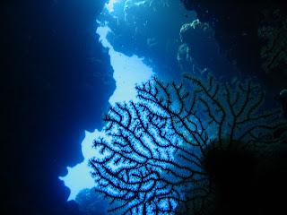 Cueva Mar Rojo