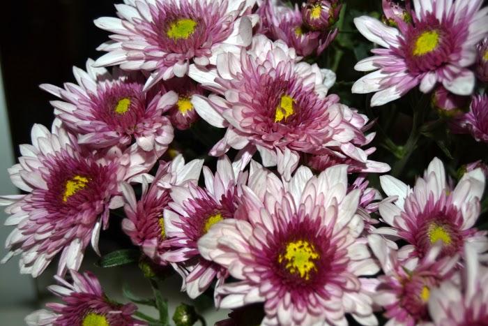 decoracion_hogar_home_deco_flores_blanco_negro_nudelolablog_02