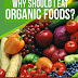 Why Should I Eat Organic Foods? - Free Kindle Non-Fiction