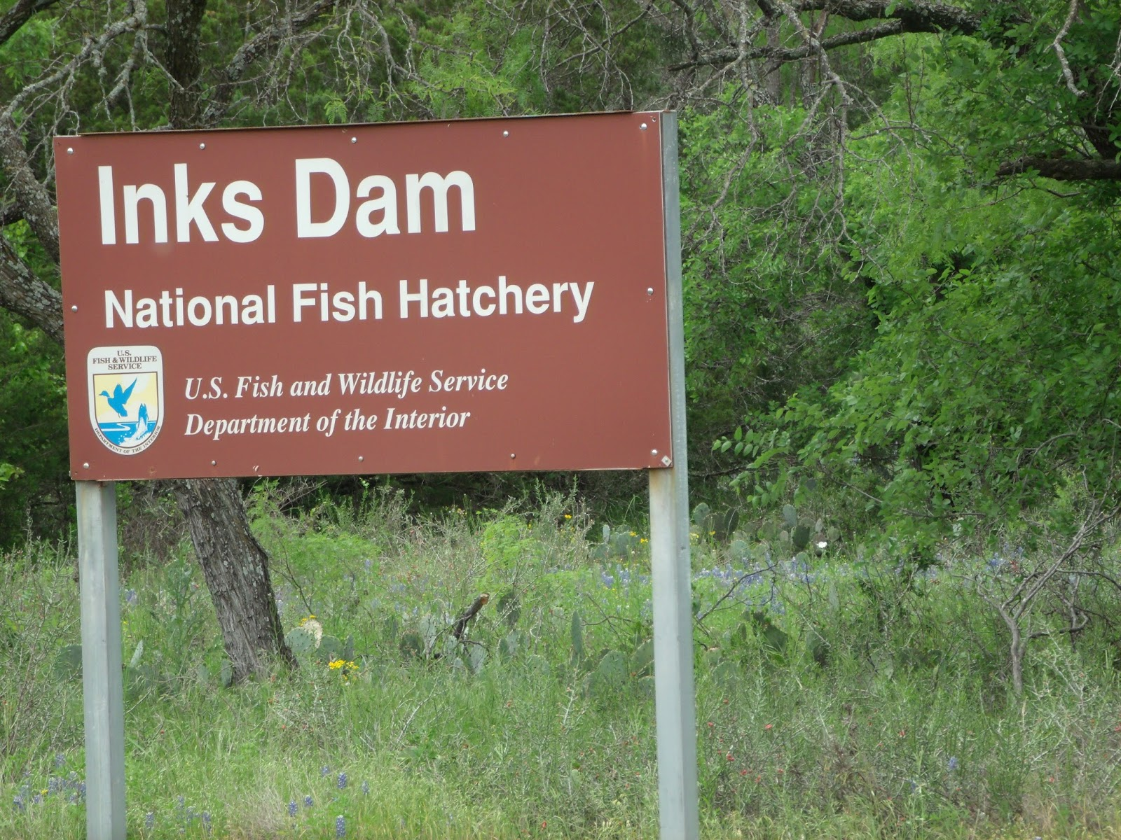 Tiny home big life review of inks dam national fish for Texas fish hatchery