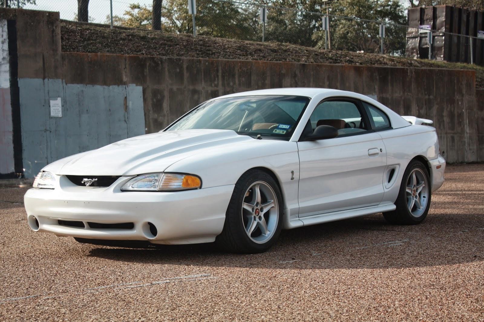Whiteboy S Mustangs 1995 Mustang Cobra R