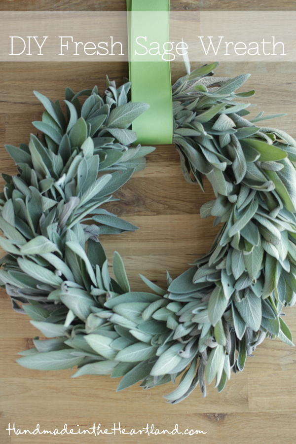 DIY Fresh Sage Wreath